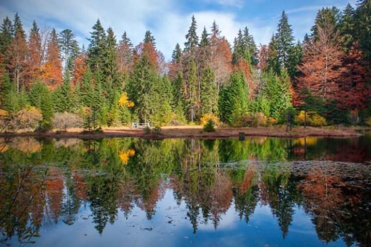 Закарпатье: Прогноз погоды на 28 октября…