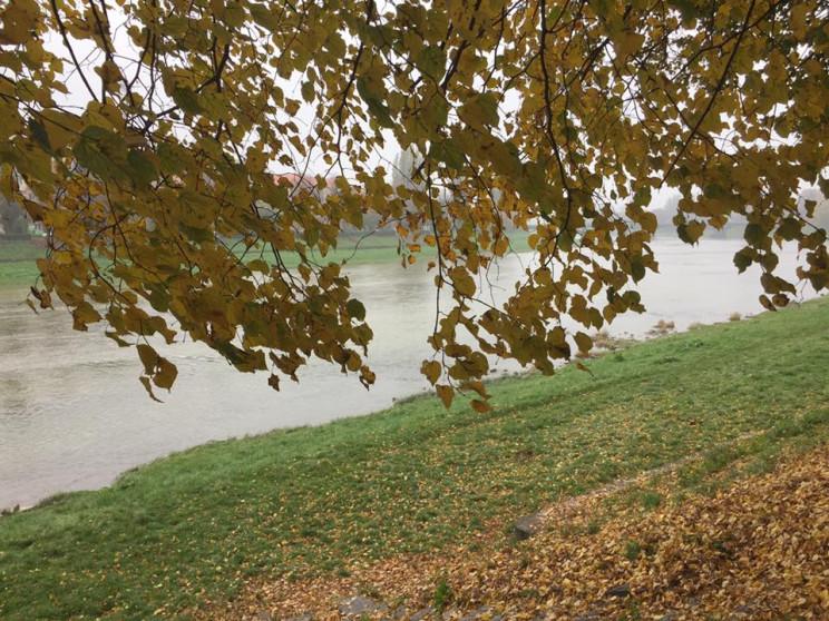 Закарпатье: Прогноз погоды на 30 октября…