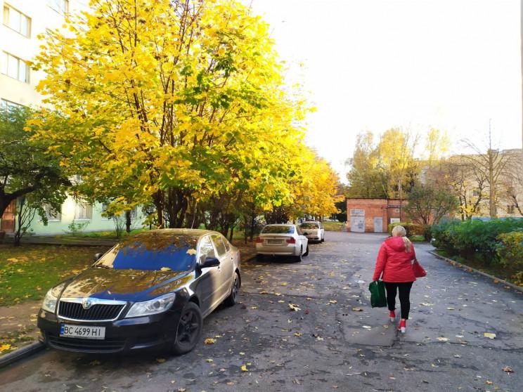 Який вигляд має золота осінь у Львові (Ф…