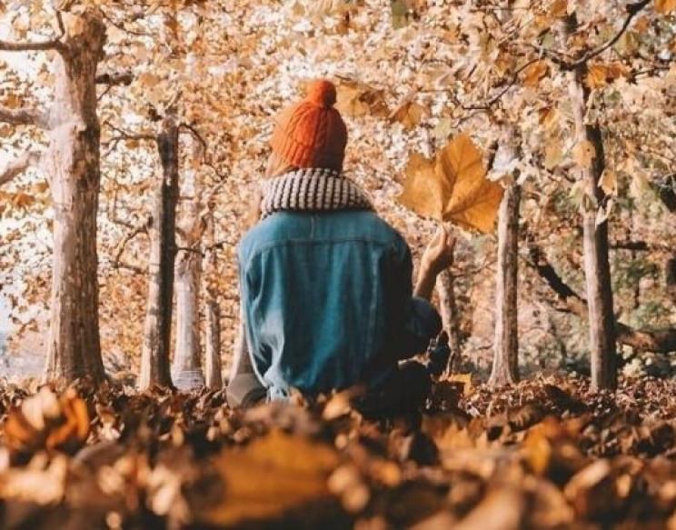 Прикмети 20 листопада: Чому в день праць…