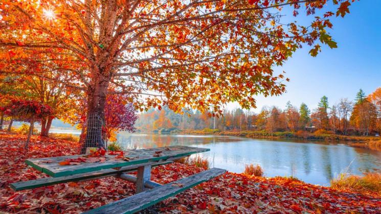 Прикмети 23 листопада: Як у день Родіона…