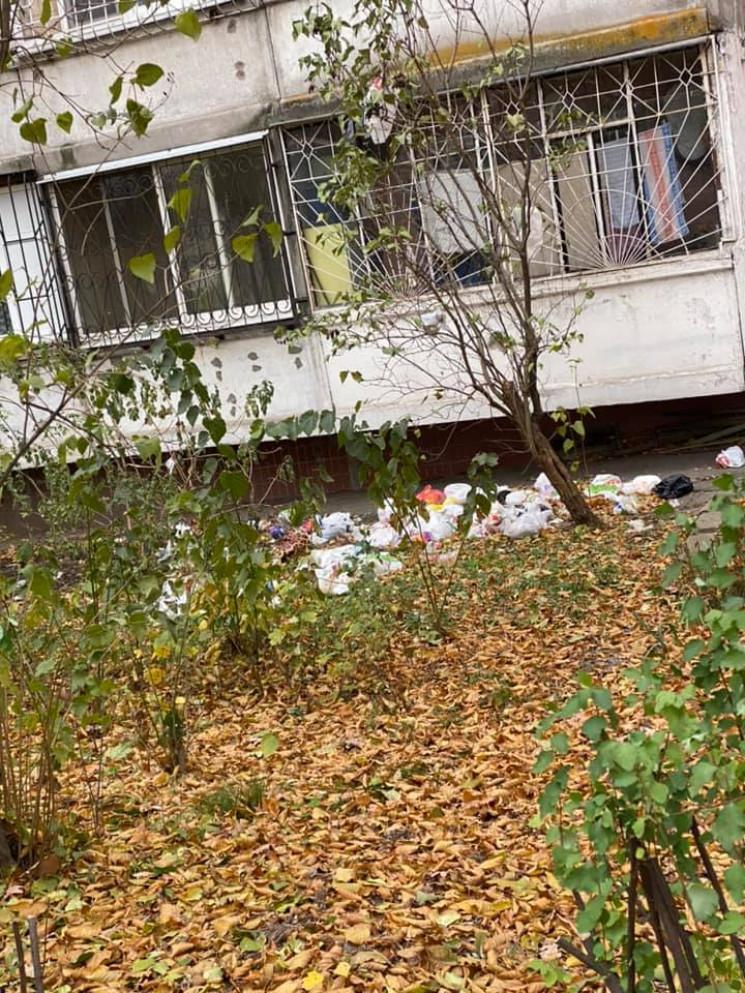 Викидають сміття з вікна: У Дніпрі під б…