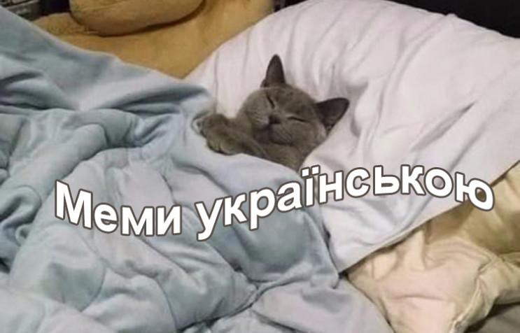 Коронавірус, погода та котики: Кращі мем…