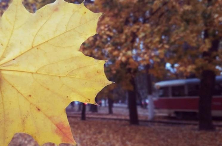 Осенняя Одесса: ТОП-10 мест для изысканн…
