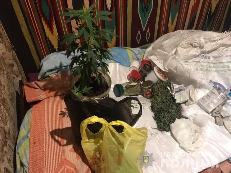 На Харківщині у конопляного агронома вил…