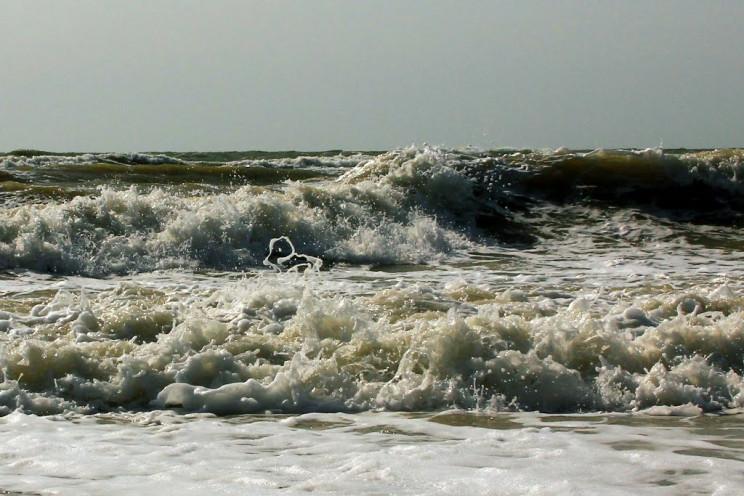 На запорожском побережье Азовского моря…