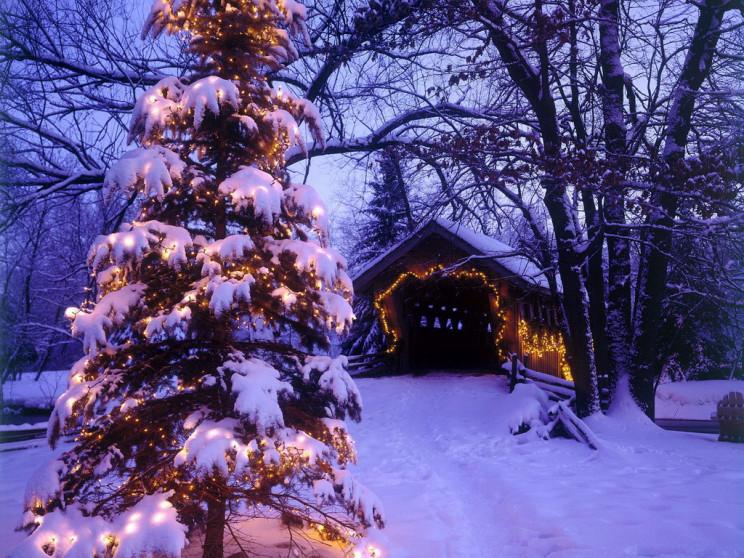 У Долинській ОТГ на Різдвяні свята скасу…