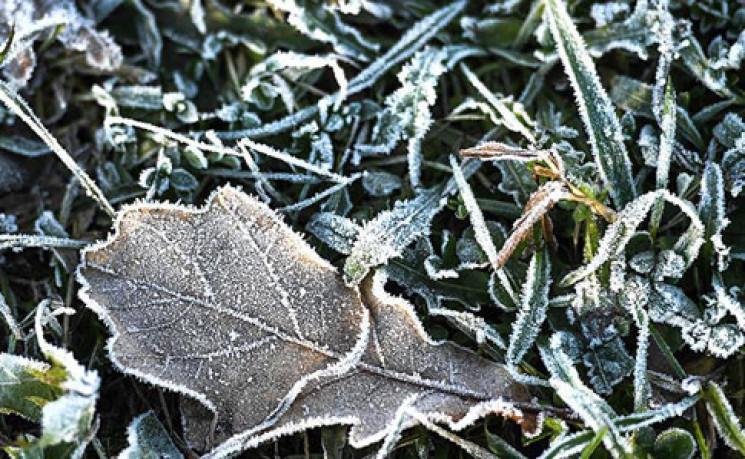 Прикарпаття: Прогноз погоди на 12 січня…
