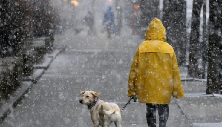 В Одесі завтра прогнозують мокрий сніг т…