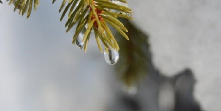 Погода в Херсоне и области 21 января: дн…