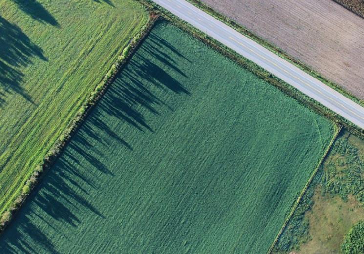Как получить земельный участок в Украине…