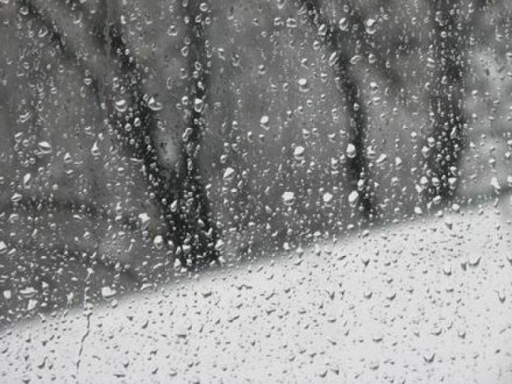 Закарпаття: Прогноз погоди на 23 січня –…