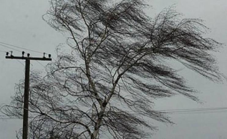 Погода в Херсоне и области 25 января: по…