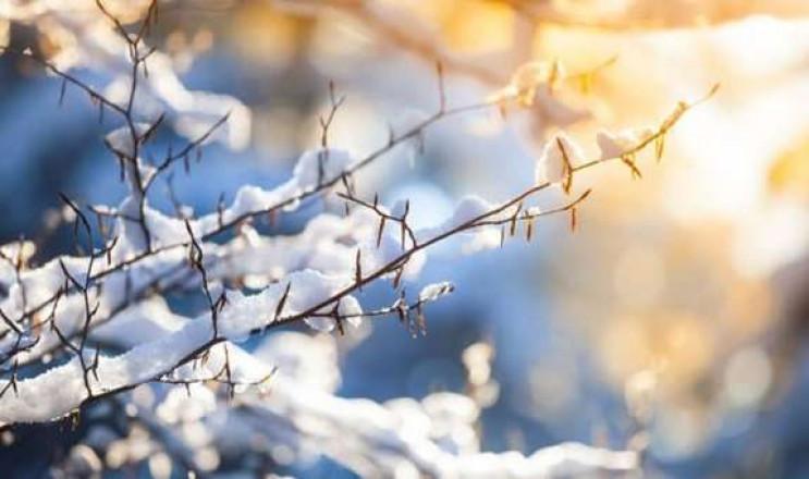 Закарпатье: Прогноз погоды на 26 января…