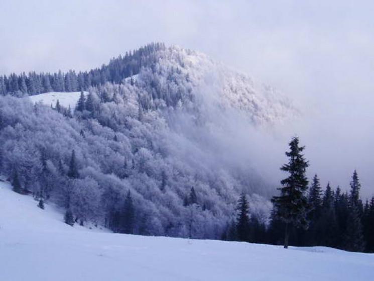 Прикарпаття: Прогноз погоди на 27 січня…