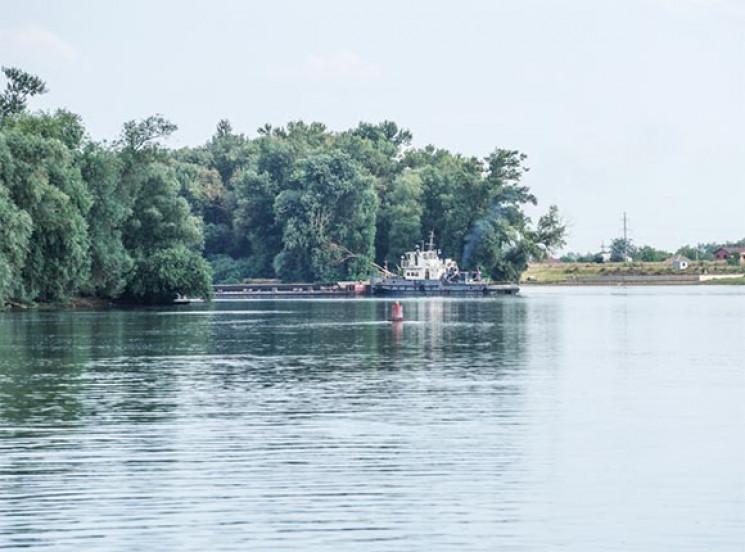 Купаться в кубанских реках стало не слиш…