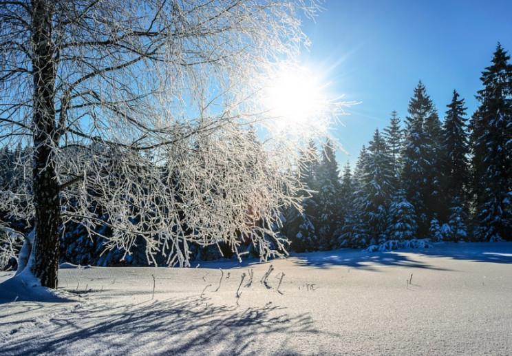 В Україні різко потепліє: Якою буде пого…