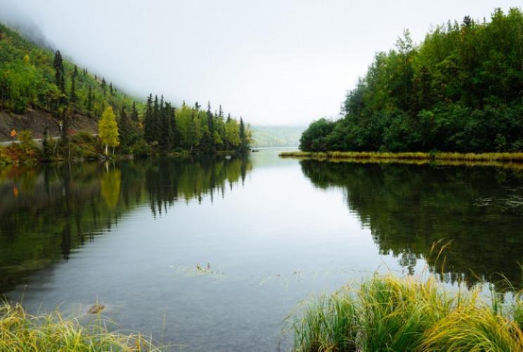 В українських річках вперше провели скри…