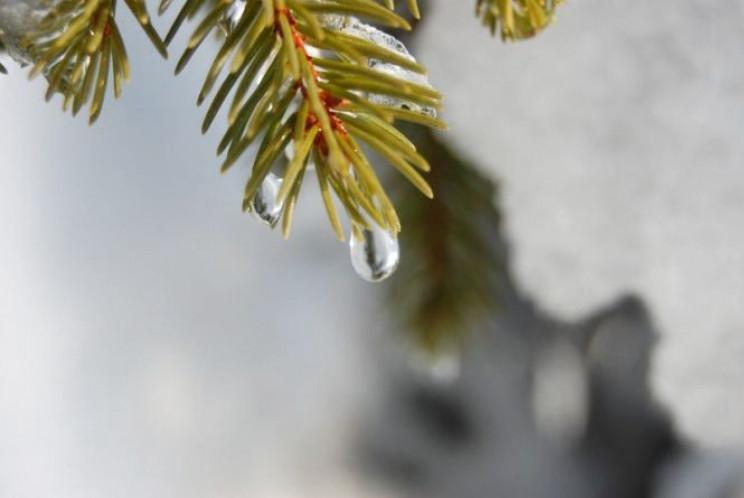 Прикарпаття: Прогноз погоди на 22 лютого…
