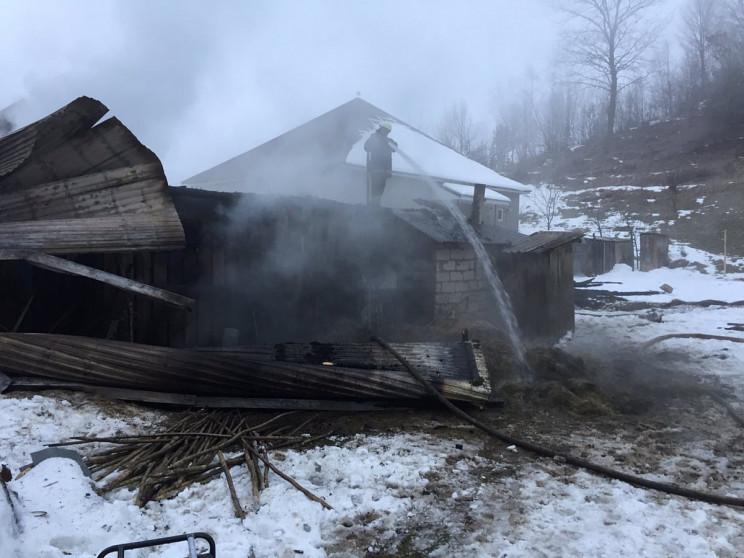 На Хустщині у пожежі ледь не згоріли сві…