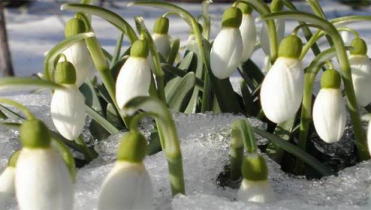 """У Вінниці з 1 березня стартує операція """"…"""