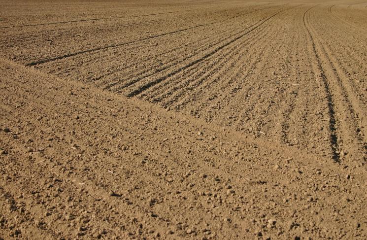 У запорізького фермера відібрали 33 гект…