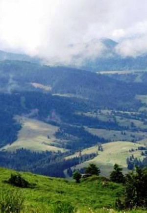 Поход в Карпаты: ТОП-5 маршрутов одного…
