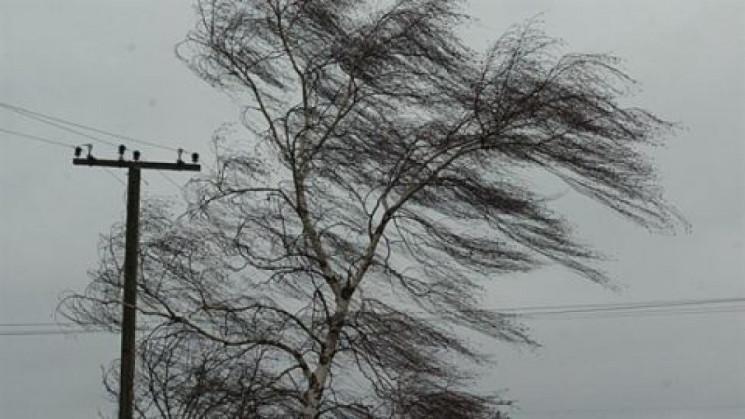 Запорожцев предупреждают о сильном ветре…