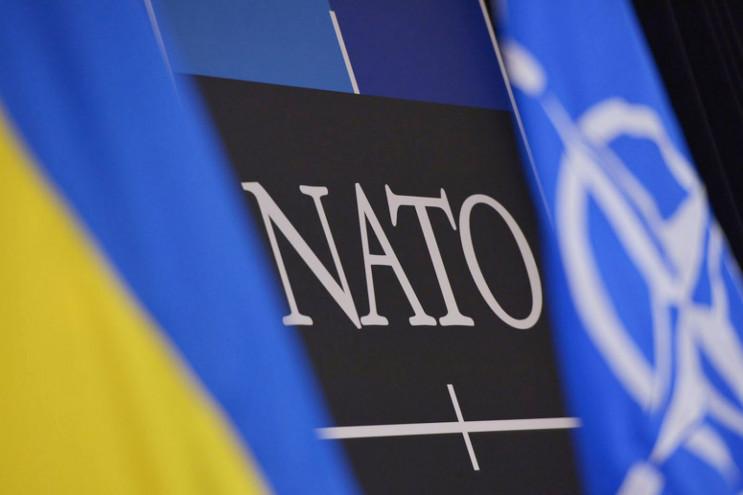 Новая доктрина НАТО: Чего бояться Путину…