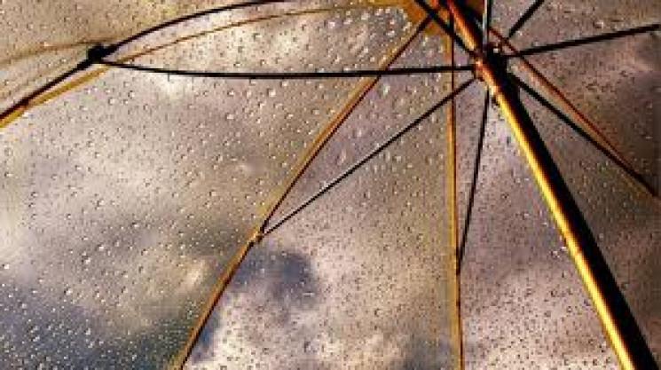 Сумчан попередили про сильний вітер у се…
