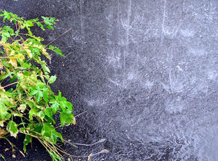 Дощі з грозами знову насуваються на Сумщ…