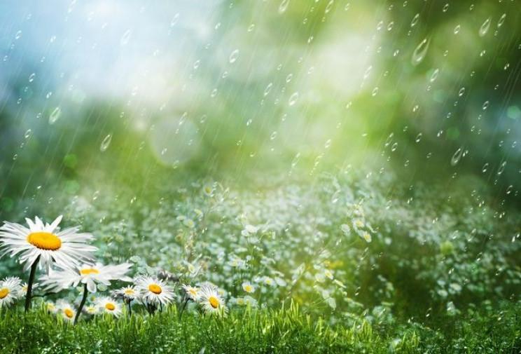 Сумчан вдень поливатиме дрібним дощем…