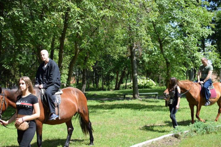 В Староконстантиновском госпитале лошади…