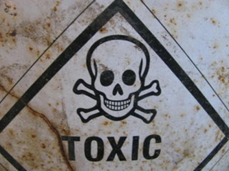 На Сумщині накопичено 560 тонн заборонен…