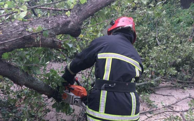 На автодорогу в Кропивницком рухнуло огр…