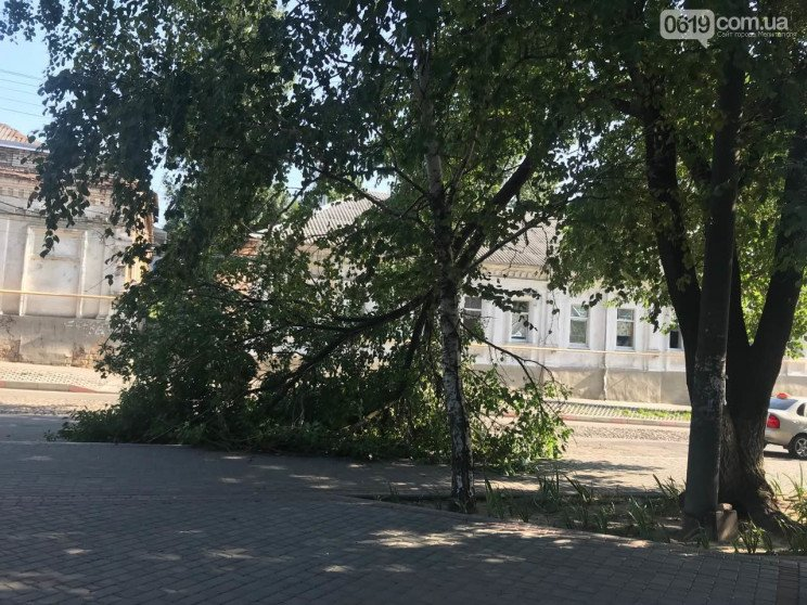 У Мелітополя біля гуртожитку впала велич…