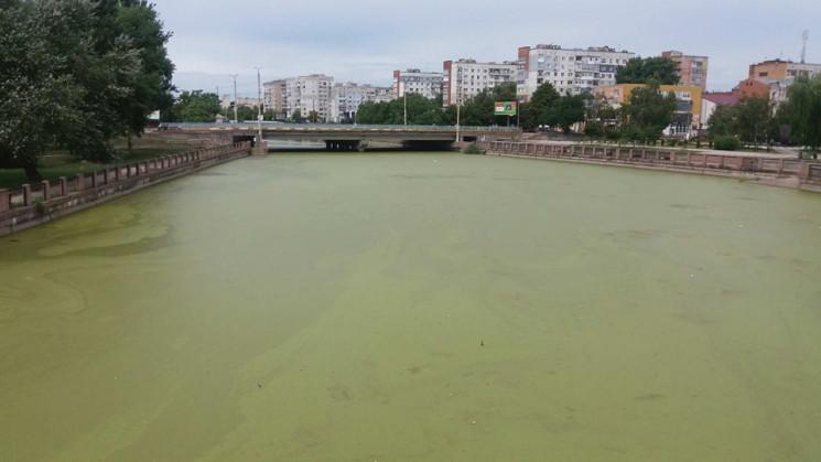 "Цветет и ""пахнет"": Ингул в центре Кропив…"