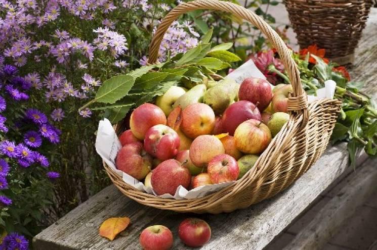 Яблучний Спас 2019: Що не можна робити…