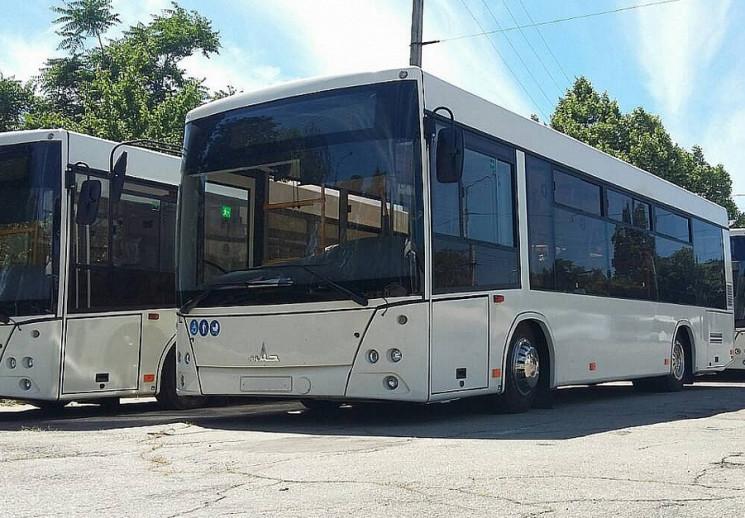 На Кропивниччине работает 93 автобуса, п…