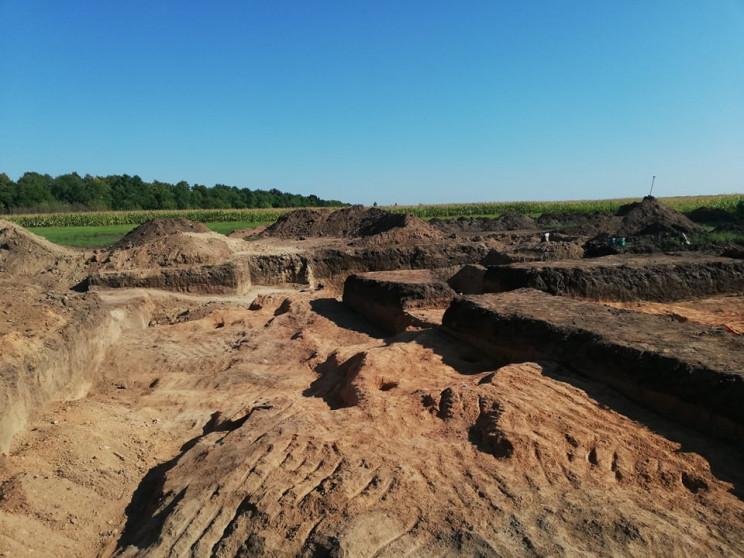На Кропивниччине археологи исследуют дре…
