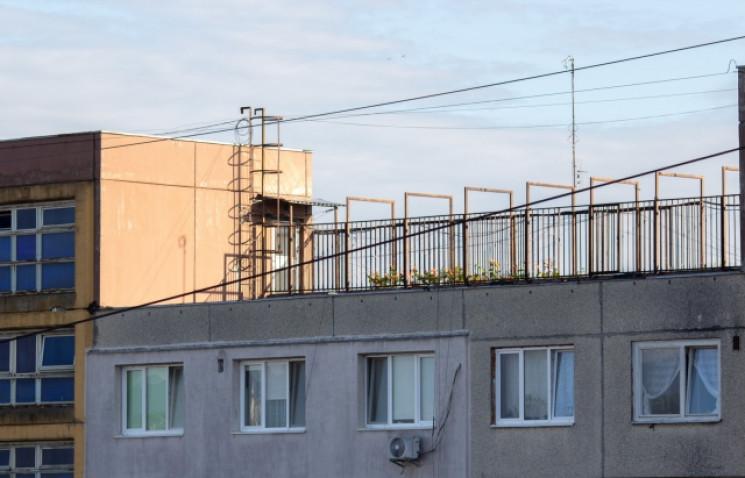 Ужгородець вирощує на даху багатоповерхі…