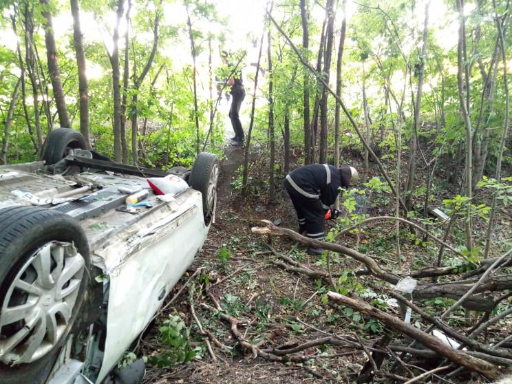 Водій Renault Logan злетів у лісосмугу т…