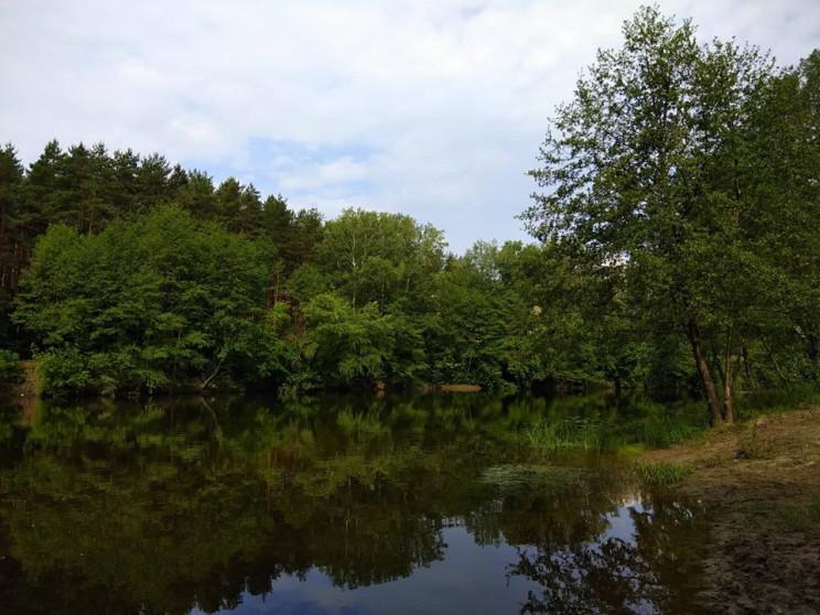 У Конотопському районі Сумщини у водоймі…
