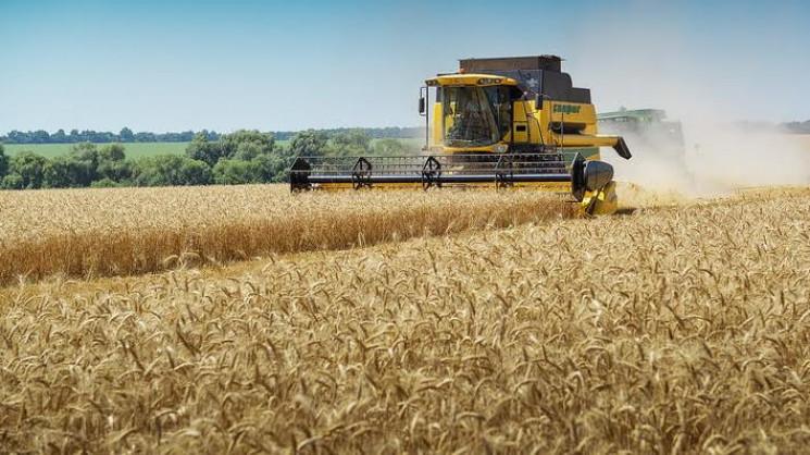 На Сумщині збирають кукурудзу та зерно…