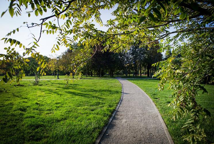 Львів'яни вимагають створити новий парк…