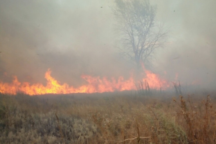 Пожежа на військовому полігоні під Харко…