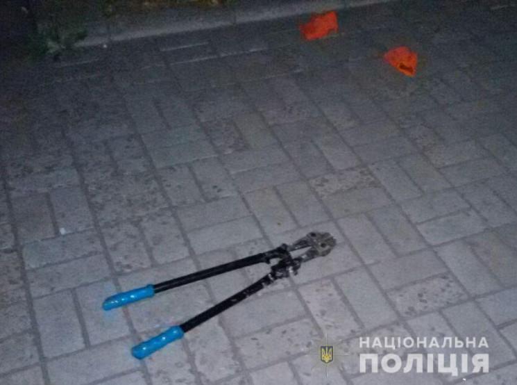 У Запоріжжі зловмисник жбурнув у поліцей…