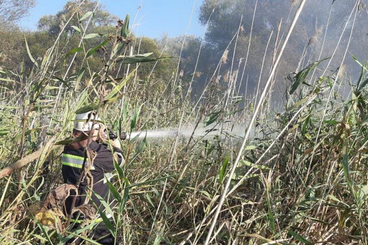 На Харківщині через пожежу постраждав чо…