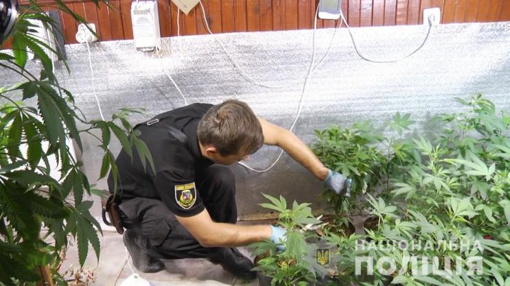 Поліція на Київщині викрила масштабну на…