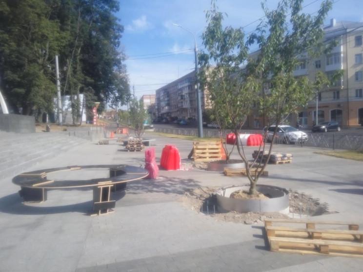 У Вінниці висаджують дерева перед входом…